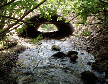 Stream Simulation Culvert Design and Performance: A USFS Perspective ...